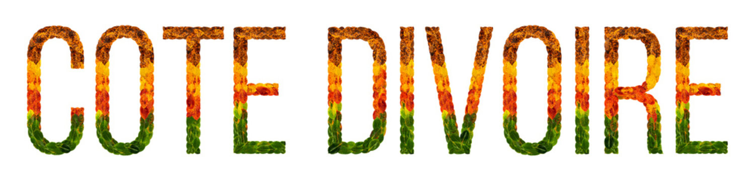 word Cote DIvoire country is written with leaves on a white insulated background, a banner for printing, a creative developing country colored leaves Cote DIvoire