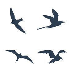 Flying birds icons