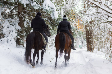 Man and woman rides on horses through snowy landscape