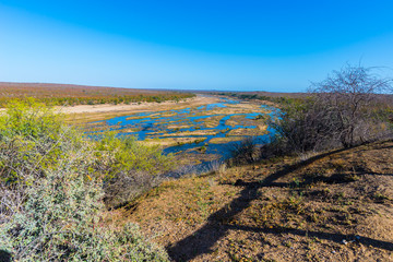 Olifants river, scenic and colorful landscape with wildlife in the Kruger National Park, famous travel destination in South Africa. Clear blue sky.