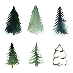 Free-hand drawing of fir-tree silhouettes in watercolor