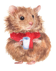 Watercolor illustration. Cute, fluffy hamster wearing scarf with cup.