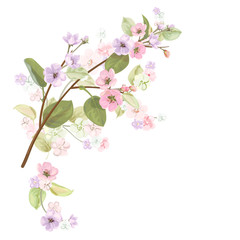 Spring blossom (bloom), branches with mauve, pink apple tree flowers. Bouquet light floret, buds, green leaves on white background. Digital draw, close-up in watercolor style, vintage, vector