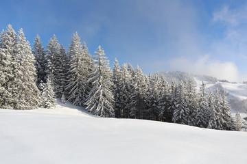 Fototapete - Gebirglandschaft im Schnee