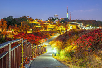 Aluminium Prints Seoul Namsan Park Autumn at night in Seoul,South Korea.