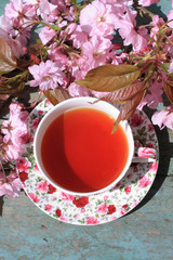 Beautiful cup of English tea with blooming Japanes cherry tree flowers