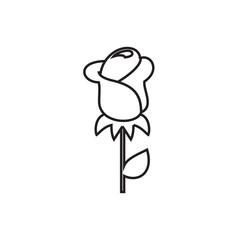 rose icon illustration