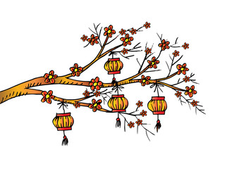Sketchy of Chinese Lantern hang on cherry tree