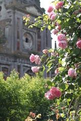 Abbaye fleurie
