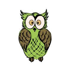 Cute owl,hand drawn mascot