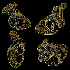 Set of human hearts. Hand drawn flesh tattoo concept of heart symbol of love, feelings, energy. Anatomical details with veins t-shirt design. Vector.