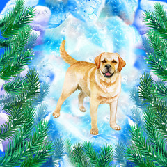 Golden retriever symbol of New Year and Christmas greeting card design with fir tree branches. Cute dog watercolor illustration isolated on snowy background, postcard in winter holidays concept