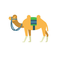 Arabian bactrian camel with colorful saddle between two humps. Cartoon character of desert animal. Symbol of Islamic culture. Flat vector illustration