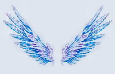 Sketch of two large beautiful wings on a white background.