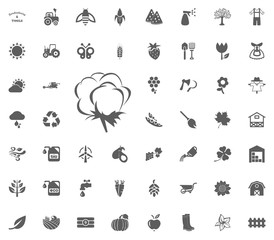 Cotton icon. Gardening and tools vector icons set
