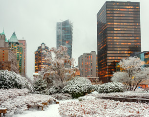 Winter city landscape with bushes and trees covered with snow and glowing windows of skyscrapers