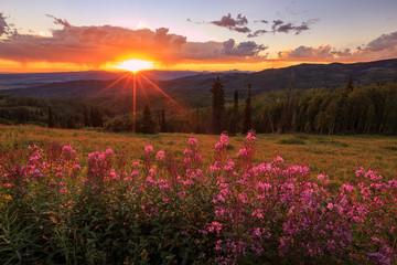 Buffalo Pass Sunset, Colorado, USA.