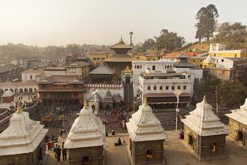 Pashupatinath Temple in Kathmandu Nepal