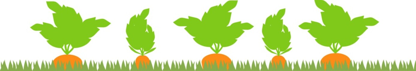 Vegetable patch with carrot silhouettes