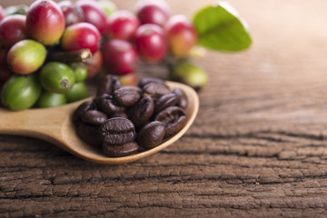 fresh coffee beans and roasted coffee beans arabica strong blend in spoon on wooden background