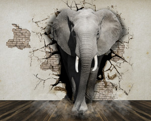 Foto op Canvas Olifant Elephant coming out of the wall. Wallpaper for the walls. 3D Rendering.