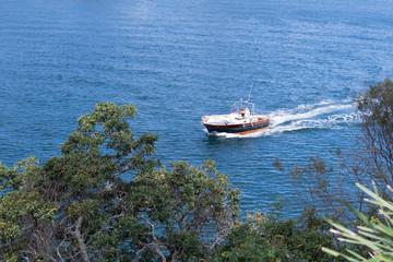 Motorboot fährt direkt an der Küstenlinie von rechts nach link entlang