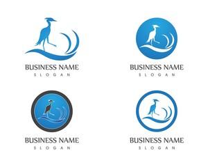 Flamingo logo design template