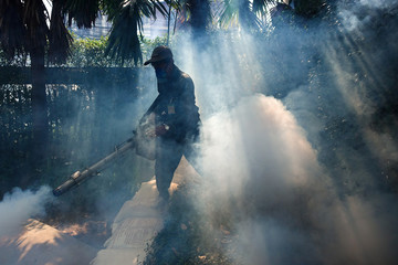 A worker sprays insecticide for mosquitos at a village in Bangkok