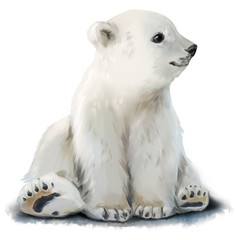 Cub polar bear watercolor painting