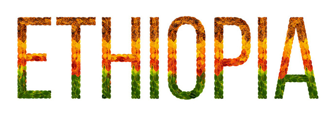 word ethiopia country is written with leaves on a white insulated background, a banner for printing, a creative developing country colored leaves ethiopia