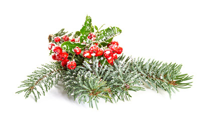 Christmas decoration with spruce branch and ivy. Isolate on white background