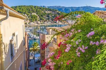 Wall Mural - Panoramic view of Porte de Soller, Palma Mallorca, Spain