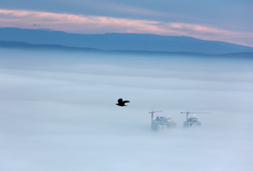 Buildings are seen as fog blankets the city of Skopje
