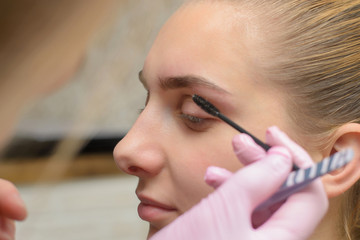 Make-up artist combing eyebrow on model's face