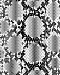 Illustration of gray skin of snake, textile pattern