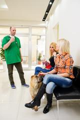 Veterinary,Doctor examing dog in Vet clinic