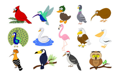 Big set of cartoon funny birds.  Birds collection. Vector illustration.