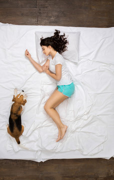 Young woman resting on the bed top view with a dog dreaming