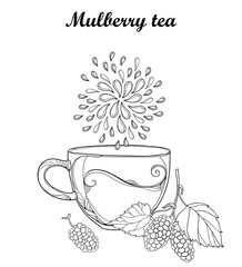 Vector contour cup of Mulberry or Morus herbal tea isolated on white background. Floral elements with outline Mulberry bunch with berry and leaves in black for fresh fruit design and coloring book.