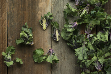 Kale sprouts on rustic wood table