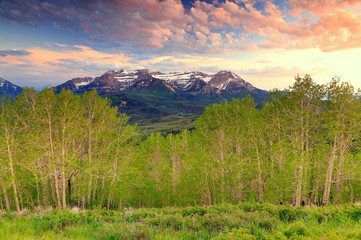 Wall Mural - Spring landscape in the Wasatch Mountains, Utah, USA.