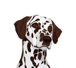 Dalmatian ogs.  Symbol of the year 2018. Vector