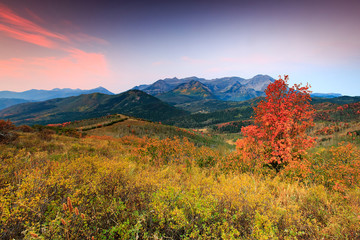 Autumn morning on Timp, Utah, USA.