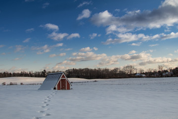 Red barn covered by the snow
