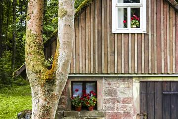 Kleines Hexenhaus im tiefen Wald