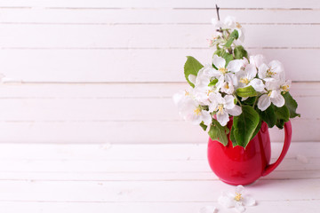 Tender apple tree flowers in  red  pitcher  on white wooden background.