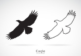 Vector of the eagle is spreading its wings. on white background, Wild Animals. Bird.