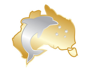 golden silver australia dolphin gold silver fish nautical marine life image animal