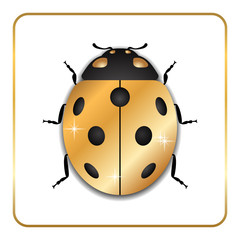 Ladybug gold insect small icon. Golden metal lady bug animal sign, isolated on white background. 3d volume bright design. Cute shiny jewelry ladybird. Lady bird closeup beetle Vector illustration