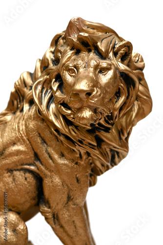 Lion face sculpture close up